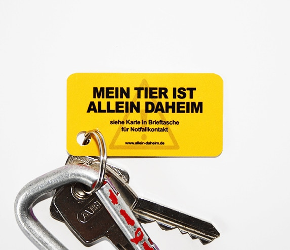 Allein-Daheim Notfall-Schlüsselanhänger mit Schlüssel